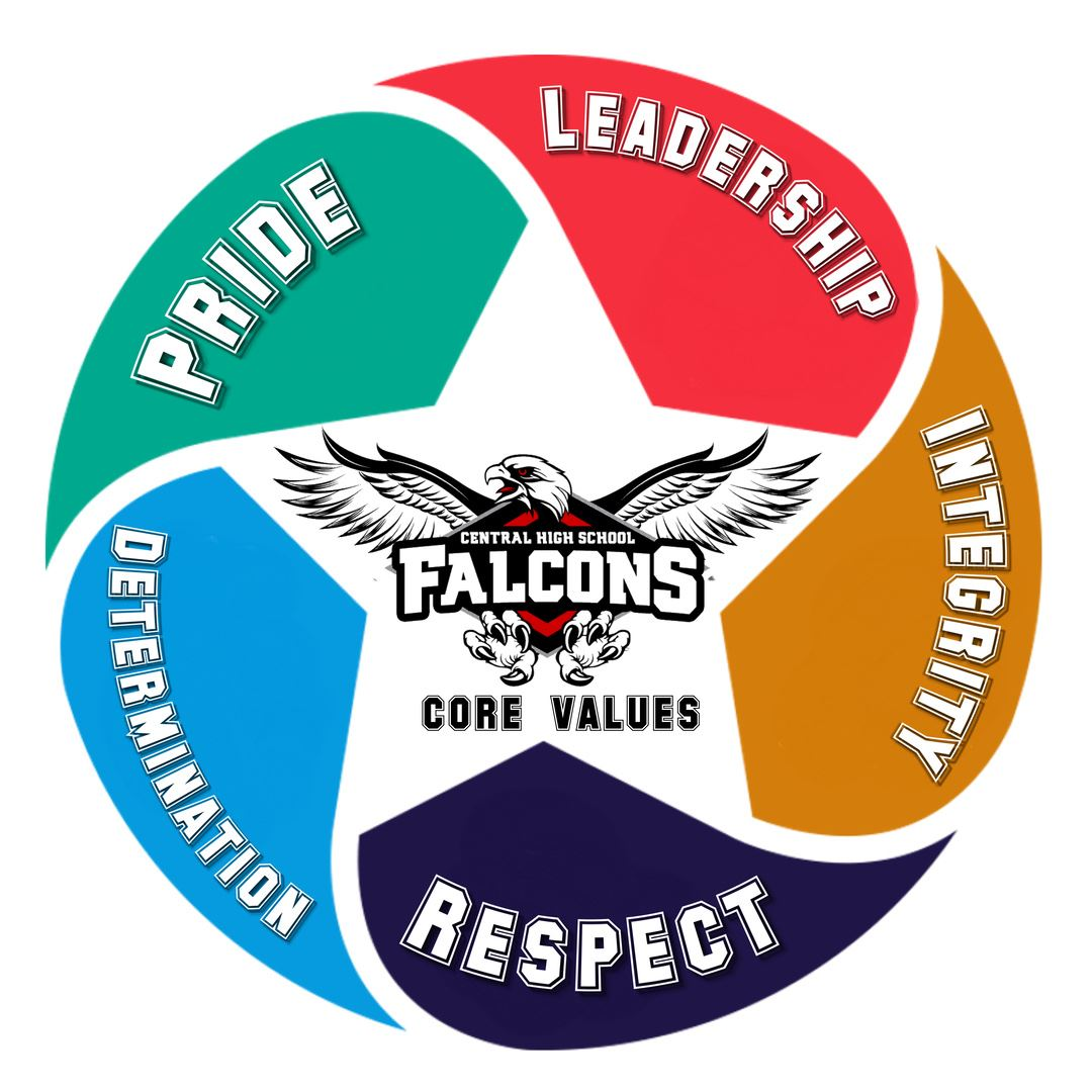 CHS Values