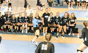 Volleyball at the Elite 8 Playoffs