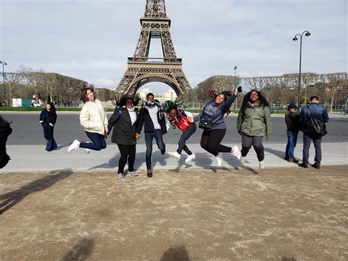 Falcons in Paris
