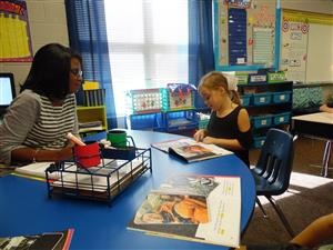 Mrs. Green and Reading Instruction